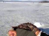 Russian walrus.