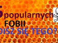 5 popularnych FOBII na świecie