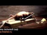 Rosyjska reklama sera