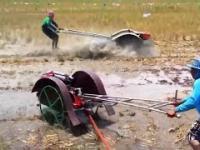 Przyjemne z pożytecznym - oranie pól ryżowych tym wynalazkiem