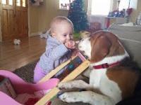 Upierdliwe dziecko i mega cierpliwy pies