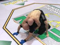 Pomyłka w MMA
