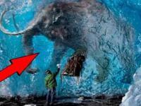 5 Wymarłych zwierząt, które wróciły do życia!