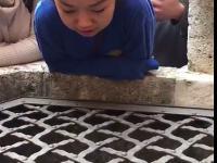 Świetny wykon Alleluja w studni z echem