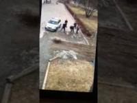 Szwedzka Policja vs Imigrant