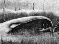 Tajemnica metalicznych kotłów z syberyjskiej Doliny Śmierci
