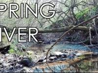 Spring Forest with River - Beautiful Relaxation Nature Sounds / Пруд среди леса ранней весной