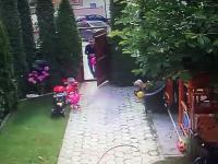Tata ratuje córkę przed atakiem psa