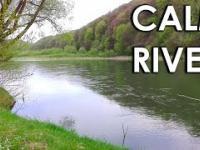 Spokojna rzeka w Lesie
