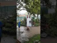 Beztroska zabawa dzieci w deszczu