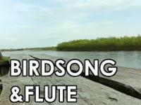 Melodyjny Flet oraz Śpiew Ptakow