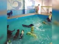 Najradośniejsza impreza na basenie na świecie