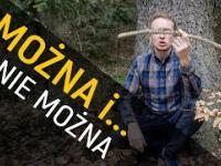 Co można robić w lesie, a za co można dostać mandat