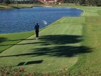 Grasz sobie w golfa aż tu nagle...