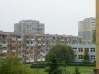 Testoviron odwiedza polskie osiedle
