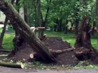 Przejście huraganu przez Moskwę