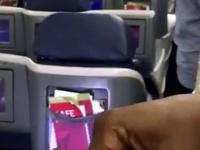 Król Nigerii leci rejsowym samolotem