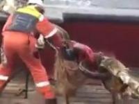 Wypadek na statku przy przecinaniu naprężonej liny