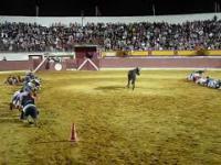 Zabawa z Bykiem