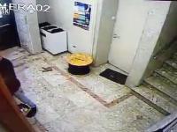 Żyd ukradł telewizor z synagogi