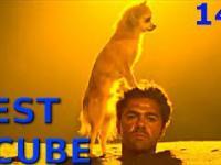 BEST CUBE 147