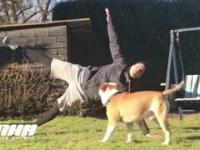 Kiedy wspólna joga z twoim psem idzie źle
