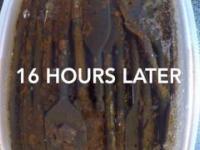 Jak ocet działa na rdzę - timelapse