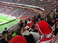 Bójka kibiców na meczu Polska Czarnogóra