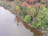 Latając dronem przypadkowo nakręcił walkę wilka z łosiem