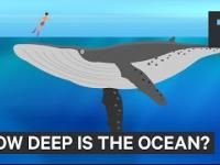 Jak gleboki ocean jest