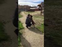 Po 3 latach odnalazł swojego psa. Oszalał ze szczęścia gdy go rozpoznał