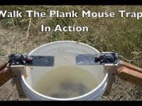 Najlepsza pułapka na myszy