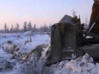 Rosjanie ratują rosomaka tundrowego, który wpadł do głębokiej dziury.