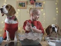 Pies pomaga dziewczynce zrobić świąteczne pierniki