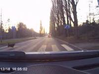 Kultura kierowcy w Szczecinie