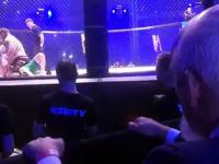 Janusz Korwin-Mikke na KSW41 ogląda walkę Popek vs Strachu