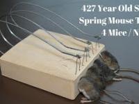 Pułapka na mysz starsza niż świat