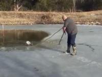 Takiej współpracy podczas ratunku psa jeszcze nie widzieliście
