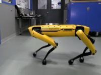 """Boston Dynamics: """"Hej kolego, czy mogę liczyć na pomocną dłoń?"""""""