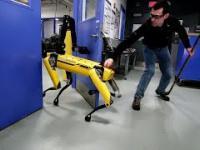 Testowanie wytrwałości robota