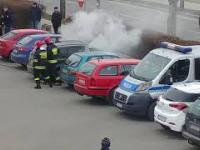 Straż pożarna gasi palący się samochód aż tu nagle w bagażniku znajdują niespodziankę