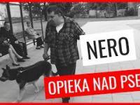 Krzysztof Kononowicz trzyma psa w bardzo złych warunkach na mrozie