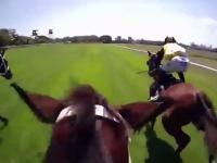 Wyścigi konne i piękny finisz klaczy Winx