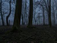 Klimatyczny cmentarz we mgle
