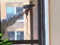 Kiedy kobieta zabiera się za remont domu