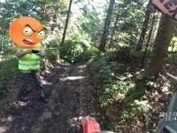 Ucieczka przed strażą leśną