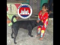 Przedmieścia Siem Reap - jak wygląda prawdziwa Kambodża