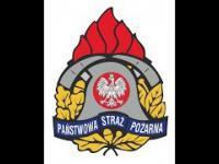 Polska Straż Pożarna w Szwecji