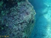 Podwodny świat Antipaxos SJCAM SJ4000