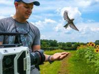 Start lotu ptaka nagrany w 20 tys. fps (slow motion)
